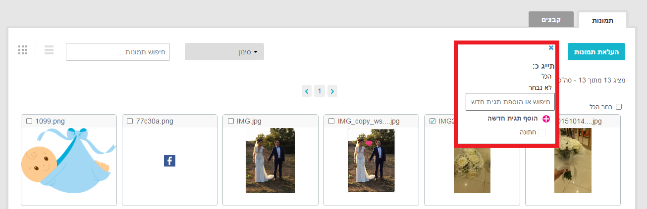 אזור המדיה - מיון וסינון תמונות